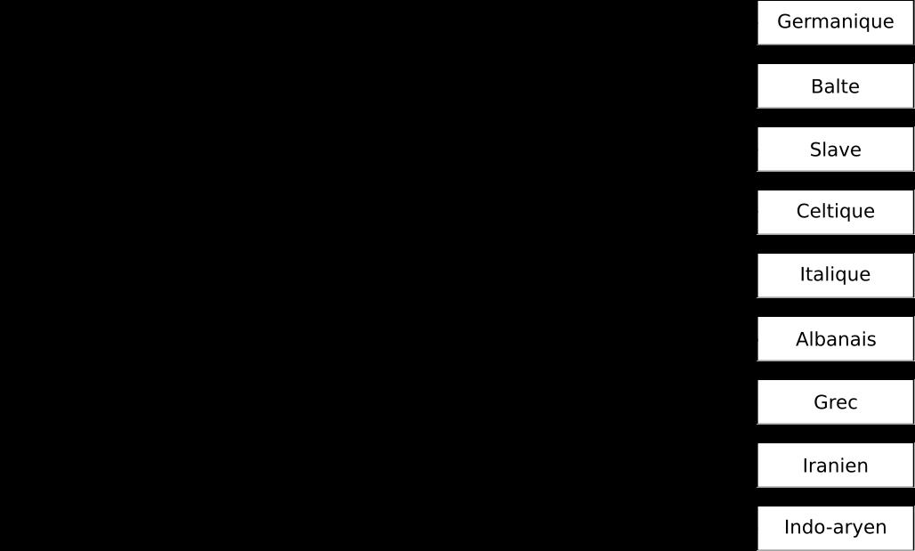 En s'inspirant des travaux de Darwin, August Schleicher a élaboré l'arbre généalogique des langues Indo-Européennes. Par Antonin Cabioc'h.